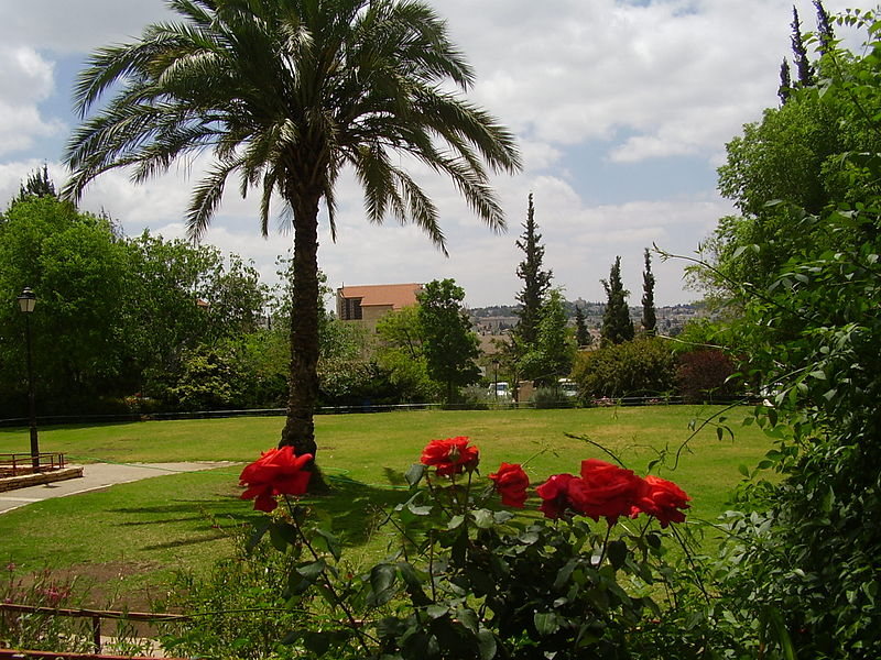 Gan HaShoshanim (The Rose Garden), a famous garden in the Talbieh neighborhood of Jerusalem