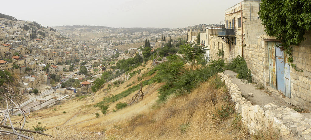 The Kidron Valley with the Mount of Olives across the valley to the left and the slope of the City of David on the right.  The Gihon Spring comes out at the foot of this slope.