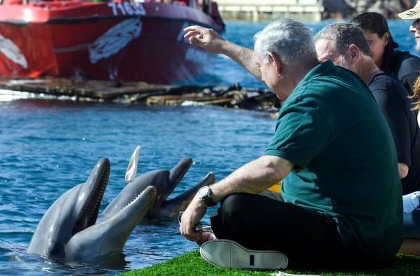 Netanyahu-Greenberg-Royal Tour-Dolphin Reef-Eilat 2013
