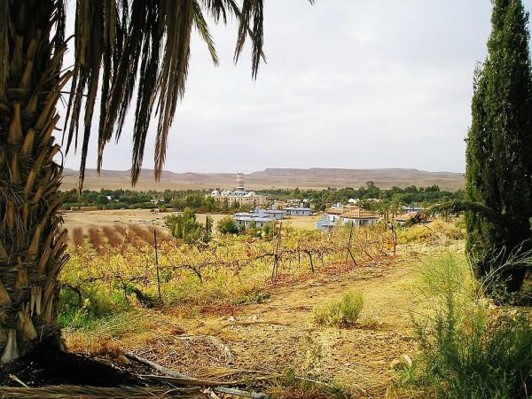 Kibbutz-Ne'ot Smadar-Negev