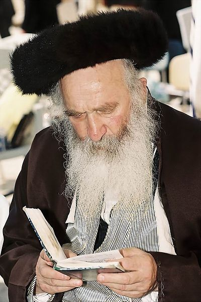 Chasidic Jew-shtreimel-fur hat-Reciting Psalms-Kotel