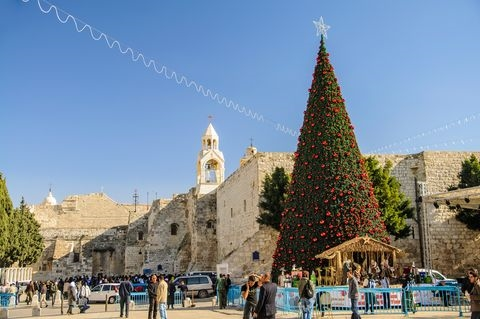 Christmas Tree-Manger Square-Church of Nativity
