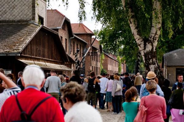 Visitors-Auschwitz