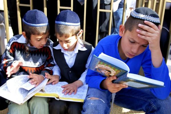 Jewish children-Hebrew-Western Wall-Jerusalem-study