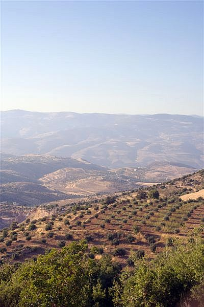Gilead was a mountainous region east of the Jordan River divided among the tribes of Gad and Manasseh.  It is situated in what is today called Jordan.