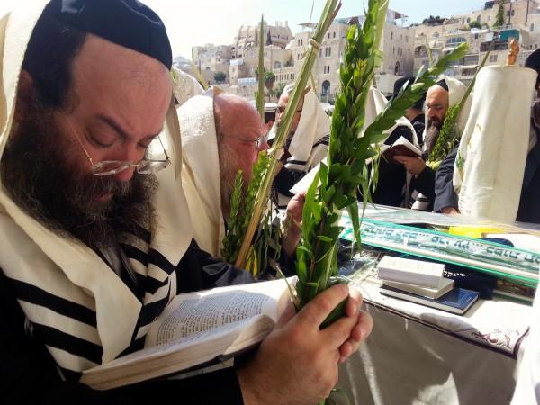 Sukkot-prayer-Western-Wall-four kinds