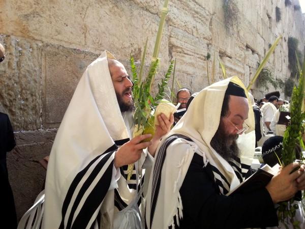 Sukkot: Season of Joy   Messianic Bible