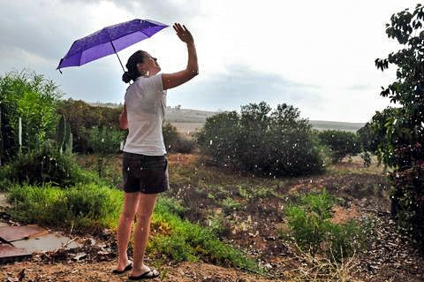 Israel-rain-umbrella