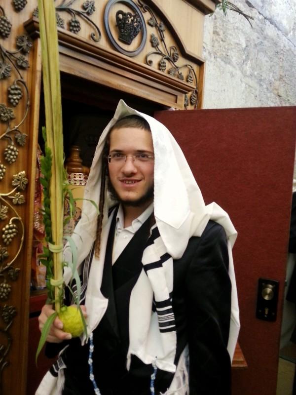 Torah-Ark-Lulav-Etrog-Sukkot-Kotel