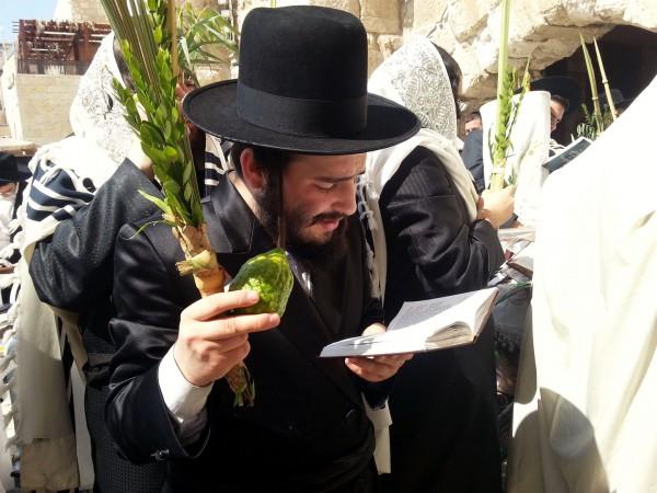 lulav-etrog-Kotel-Sukkot-praying-four kinds