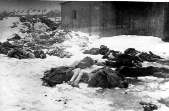 On January 17, 1945, as Allied Forces approached Auschwitz, the Nazis began evacuating 56,000 prisoners in forced Death Marches. As many as 15,000 Auschwitz prisoners died and the corpses of thousands of prisoners lined the evacuation routes. Meanwhile, back at the camp, the Nazis tried to remove all traces of crimes by blowing up crematoriums and barracks, and murdering prisoners who were too sick to participate in Death Marches. When the Soviet Army entered Auschwitz, they were greeted by piles of the frozen corpses of the newly murdered.