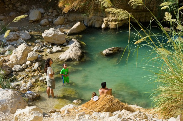 An Israeli family enjoys the cool waters of the Ein Gedi (Kid Spring), an oasis in the Judean Desert near the Dead Sea.