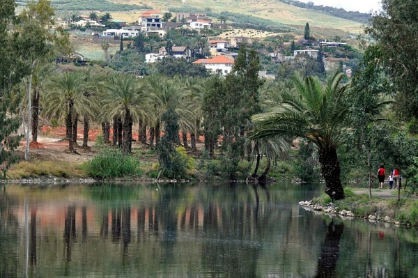 Kinneret-Holy Land