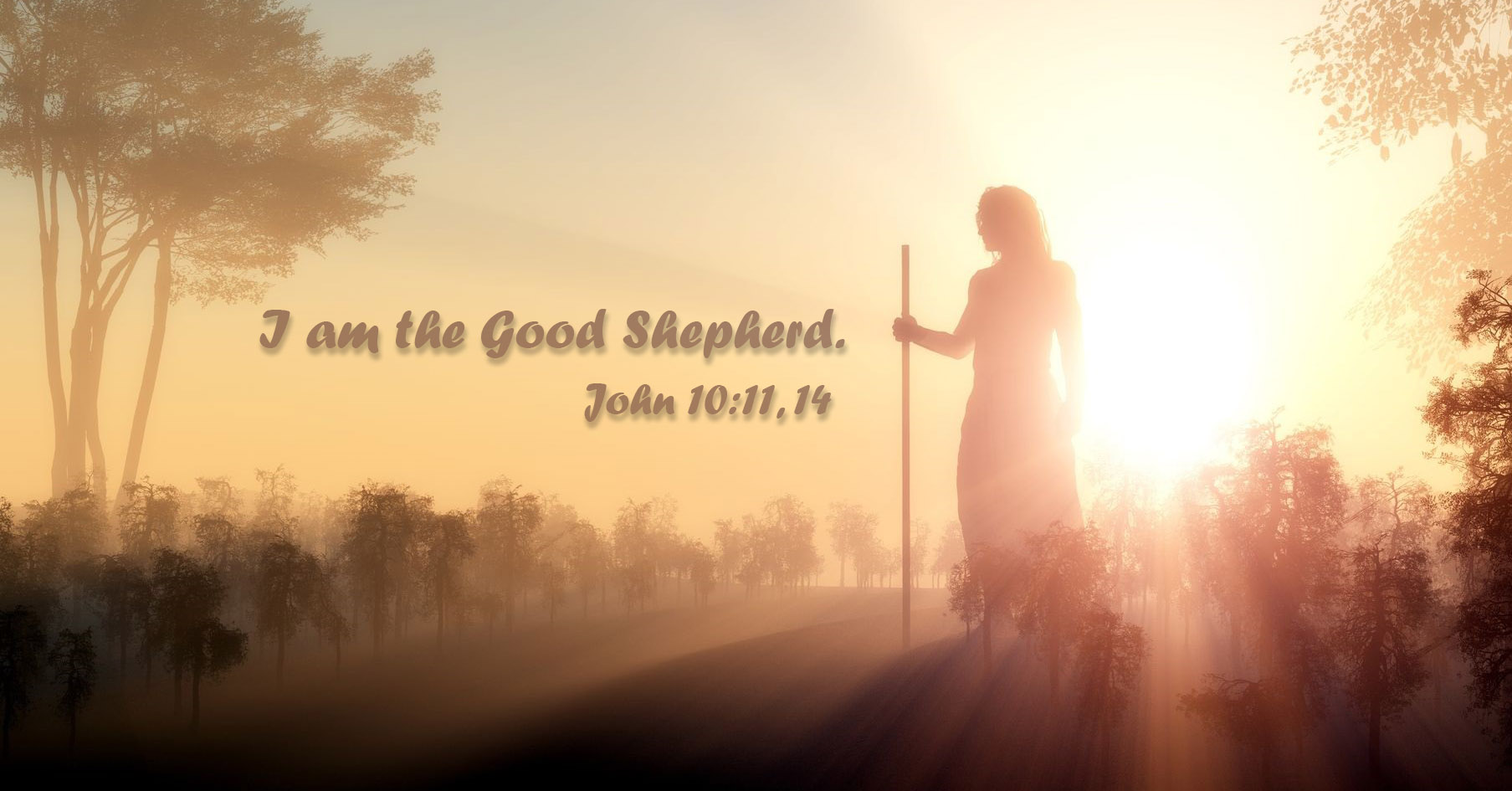 I am the good shepherd. John 10:11, John 10:14