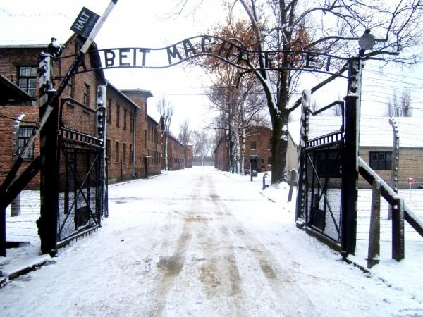 Wannsee Conference-Auschwitz