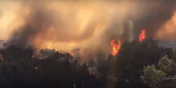 Haifa, arson, 2016 Israel fire