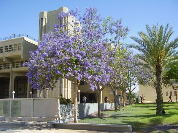 Ben Gurion University
