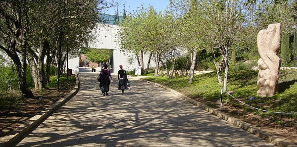 Avenue of the Righteous Among the Nations at Yad Vashem in Jerusalem