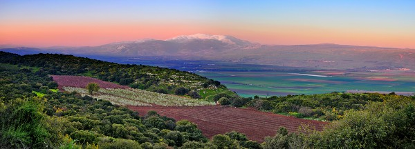 Mount Hermon and agricultural fields in northern Israel at sunset