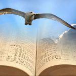 Eagle, Bible, freedom